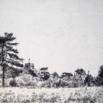 cja-landscape-study-32-maybe-chislet