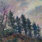 CJA landscape study 53J